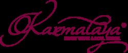 Karma-Bag Abo Logo